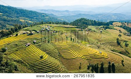 The Most Beautiful Rice Terraces At Little Hamlet Of Rolling Rice Terraces Name Ban Pa Pong Piang An