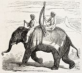 Old illustration of an elephant in Oude, antique Indian northern kingdom, By unidentified author,  published on L'Illustration Journal Universel, Paris, 1857 poster