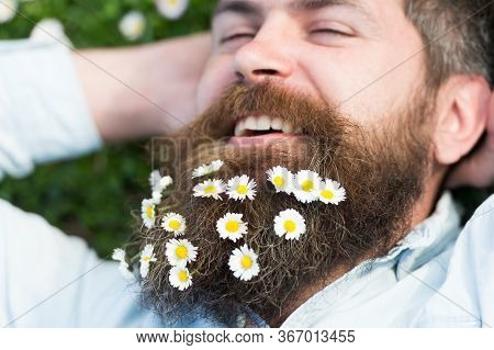 Hipster On Cheerful Face Lays On Grass, Close Up. Springtime Concept. Man With Long Beard And Mustac