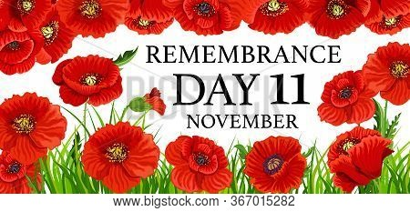 Remembrance Day Poppy Flowers, Vector Poster Of Commonwealth National Memorial Tribute To Army Soldi