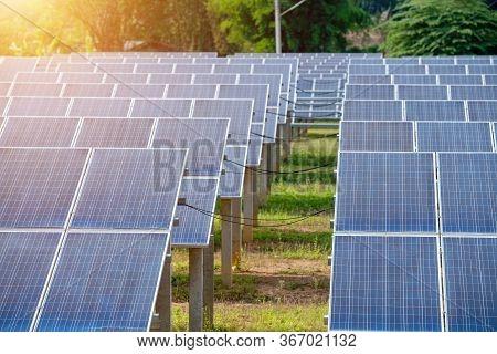 Sunlight Photovoltaic Cells In The Solar Panel Farm