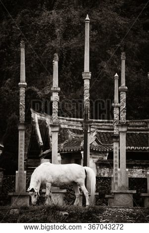 FUJIAN, CHINA – MARCH 2, 2018: White horse in front of a temple in Hakka villiage in Fujian, China.