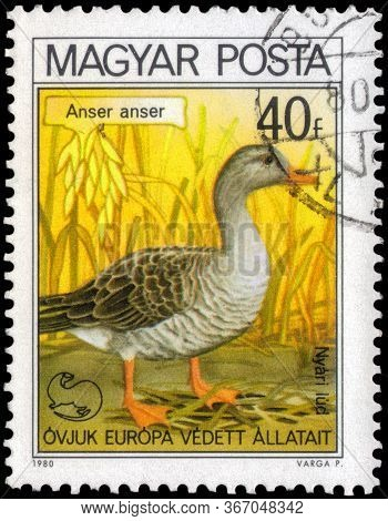 Saint Petersburg, Russia - May 17, 2020: Postage Stamp Issued In The Hungary With The Image Of The G