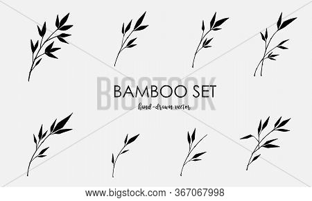 Bamboo Vector Elements Set Isolated On A Light Background. Black Sign Of Bamboo In A Flat Style. Sim