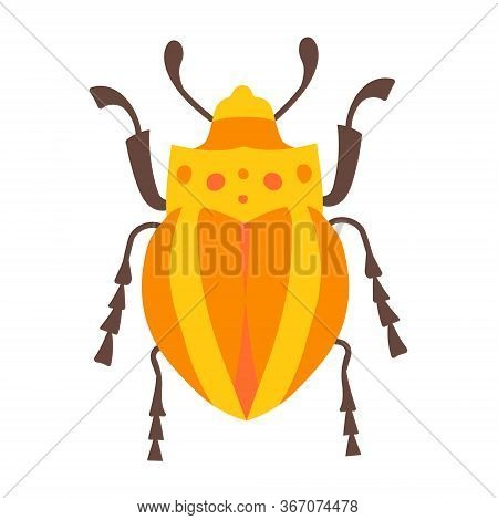 Stock Vector Graphics Yellow Striped Beetle. Tropical Small Insect. Exotic Beetle On A White Backgro