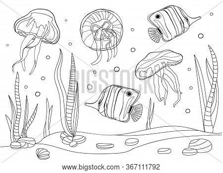 Coloring Pages For Kids And Adults. Tropical Fish And Jellyfish Vector Illustration. Outline Underwa