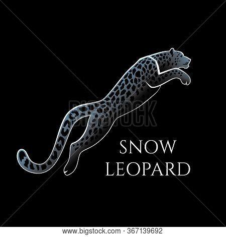 Leaping Snow Leopard Logo Sign Emblem Vector Illustration On Black Background