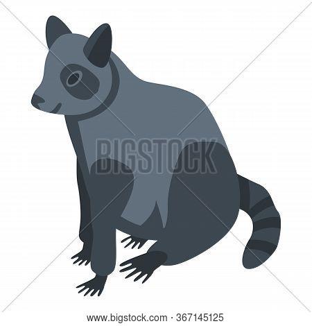 Kawaii Raccoon Icon. Isometric Of Kawaii Raccoon Vector Icon For Web Design Isolated On White Backgr