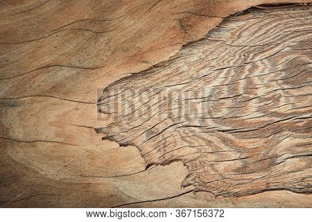 Real Nature Brown Plywood Texture With A Layer Of Cracks And Old Panel Wood Grain For Background. Wo