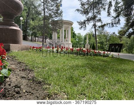 Old Alley With Green Fir Trees In A Green Park. Flowerbed With Red Flowers. White Arbor. Vase Of Red