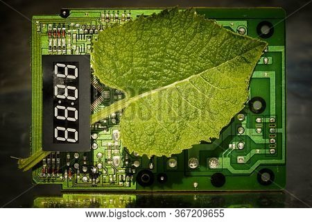 Circuit Board And Leaf With Electronic Timer. Concept Of Eco Friendly Technology. Green Energy. Comb