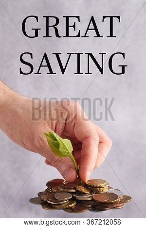 Green Sprout Sprouts From A Stack Of Coins On A White Background. Hand Picks A Seedling. Isolated. G