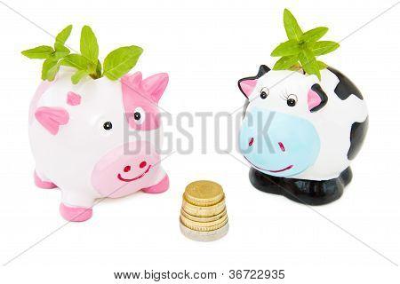 Saving Money With Piggy Banks