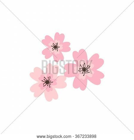 Cherry Pink Flower, Spring Sakura Blossom Vector Icon Set