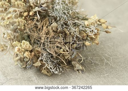 Close-up Of Natural Bouquet Of Dried Flowers On Light Burlap, Background. Vintage Style, Nostalgia C