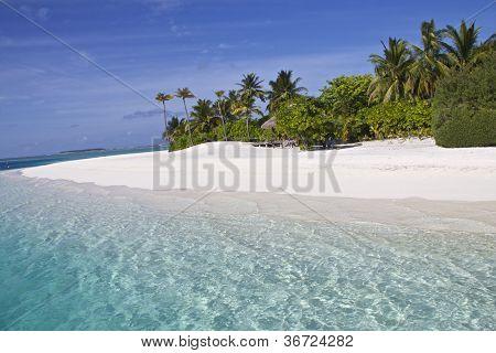 clear water white beach