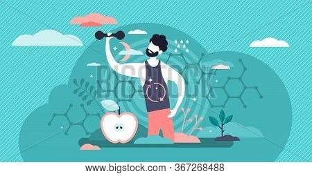 Male Metabolism Vector Illustration. Food To Energy Process Flat Tiny Persons Concept. Nutrition Che