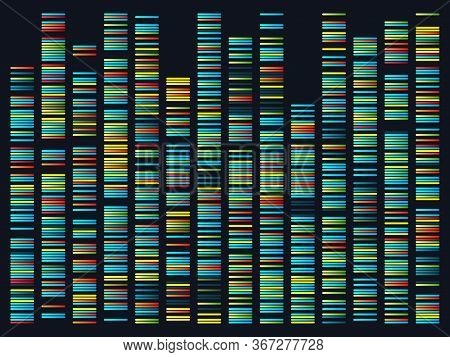 Genomic Sequences. Structure Of Dna Genome Sequence Map. Human Pairs Of Chromosomes Vector Illustrat