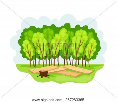 Wood And Forest Area As Natural Resource Vector Illustration