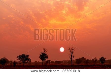Red And Orange Sunset Sky With Deciduous Dipterocarp Forest In Northeast Thailand. Beautiful Sunset