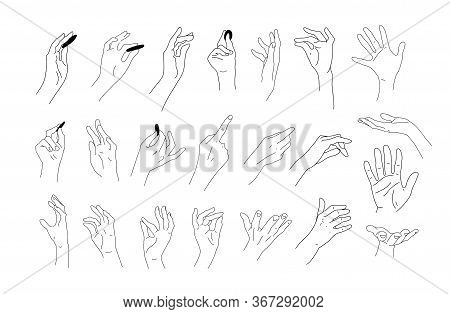 Big Set Of Realistic Hand Sketches. Linear Drawings Of Hands, Fingers And Palms. Elements For Design