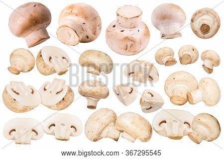 Fresh Champignon Mushrooms Isolated On White Background. Champignon Mushroom Slices. Big Set Of Flyi