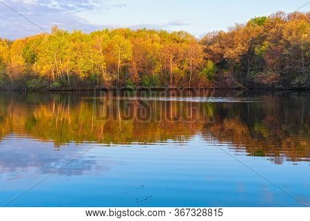 Marthaler Park Pond And Woodlands Reflected On Water At Dawn In West Saint Paul