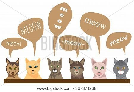 Funny Cats With Text Meow In Flat Style. Isolate On White Background. Vector Collection Of Cat, Feli