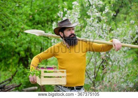 Man Farmer. Farmer Hold Box. Bearded Man Preparing To Planting. Farmer Works In Garden. Gardening. B