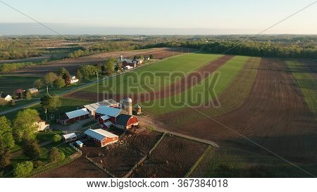Aerial View Of American Countryside Landscape. Farm, Red Barn, Cows. Rural Scenery, Farmland. Sunny