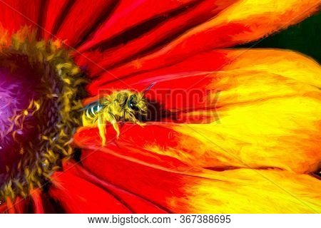 A Bumble Bee Is On A Colorful Flower Pollinating
