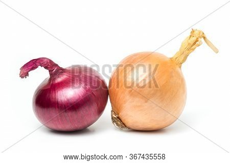 Red Onion (allium Cepa) Fresh Isolated Is A Plant That Uses The Roots Or Leaves And Many Nutrients O