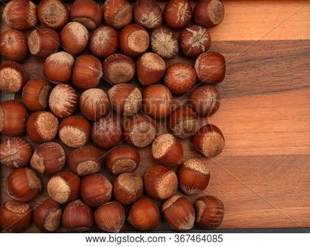 The Organic Hazelnuts. For Texture Or Background.