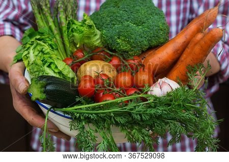 Assortment Or Farmer Market Bio Organic Ripe Vegetables In Hands
