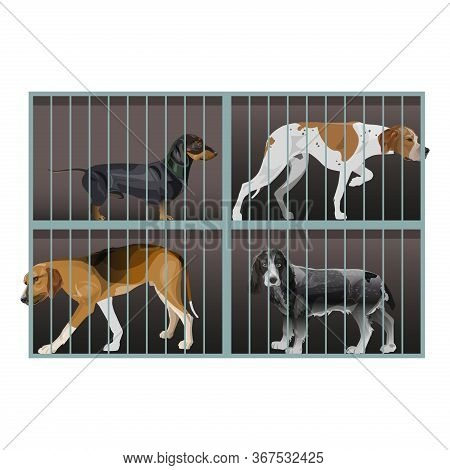 A Shelter For Homeless Animals. Dogs Inside A Cage