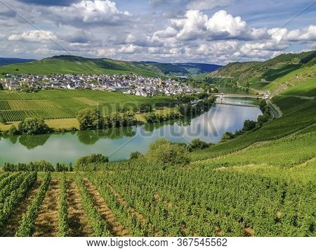 Mosel Loop On A Cloudy Day In Summer View To Trittenheim, Germany