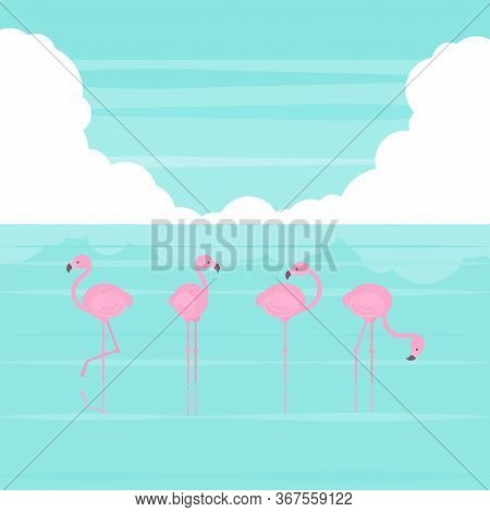 Pink Simplified Flamingos Standing In Several Poses In Sea Water And Bright Blue Sky With Cloud In F