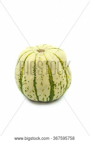 Single Round Green And White Ornamental Pumpkin Or Gourd With Speckled Rind On A White Background Wi