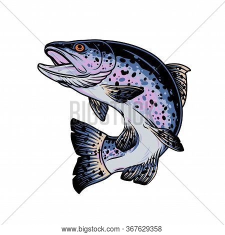 Rainbow Trout Vintage Concept On White Background Isolated Vector Illustration