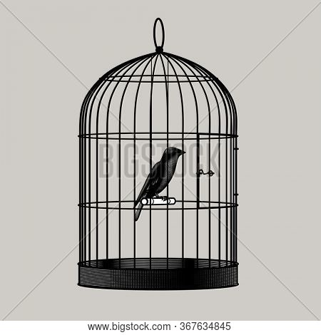 Bird sitting inside a cage. Vintage engraving stylized drawing
