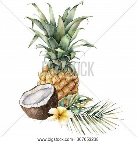 Watercolor Composition Of Tropical Fruits. Hand Painted Card With Pineapple, Coconut, Plumeria And P