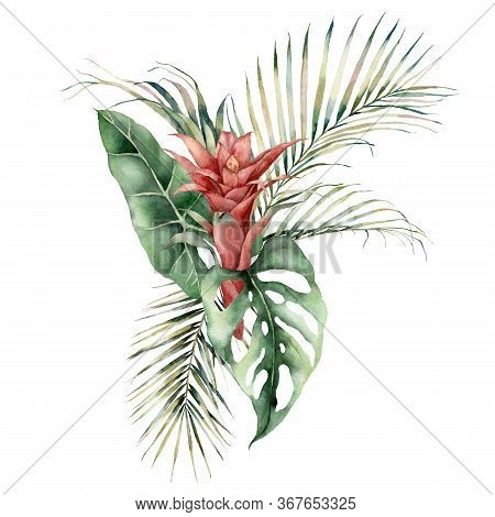 Watercolor Tropical Bouquet With Guzmania, Palm And Monstera Leaves. Hand Painted Card With Red Flow