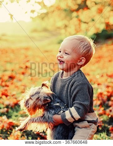 Autumn Kids. Beautiful Little Kid Playing With Her Yorkshire Terrier In Park. Enjoy The Autumn With