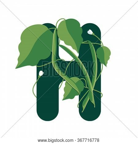 Letter H With Green Leaves And Haricot