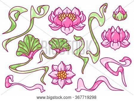 Set Of Lotus Flowers. Art Nouveau Vintage Style. Water Lily Decorative Illustration. Natural Tropica