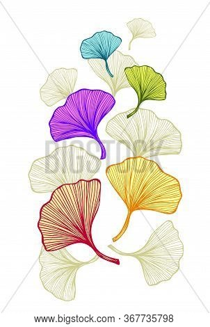 Template Frame Or Flyer Or Banner With Colorful Gingko Biloba Leaves For Decoration Different Things