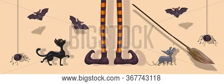 Halloween Elements Set, Witch Legs, Broom, Mouse, Rat, Black Cat, Spider, Bat. Vector Clipart For Ho