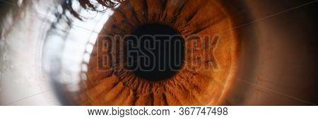 Close-up Human Eye, Lens, Cornea And Brown Iris. Eye Health Prevention. Examination Symptoms Disease