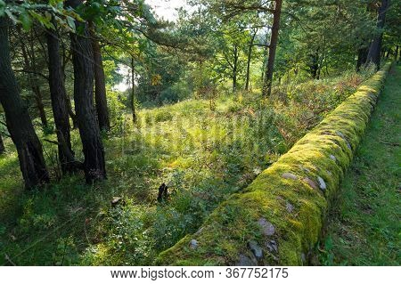 Forest Landscape: View From The Hill To The River, There Is A Round Cobblestone Border Overgrown Wit