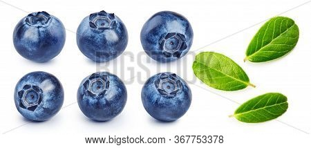 Set Of Fresh Blueberries And Blueberry Leaves Isolated On White Background.